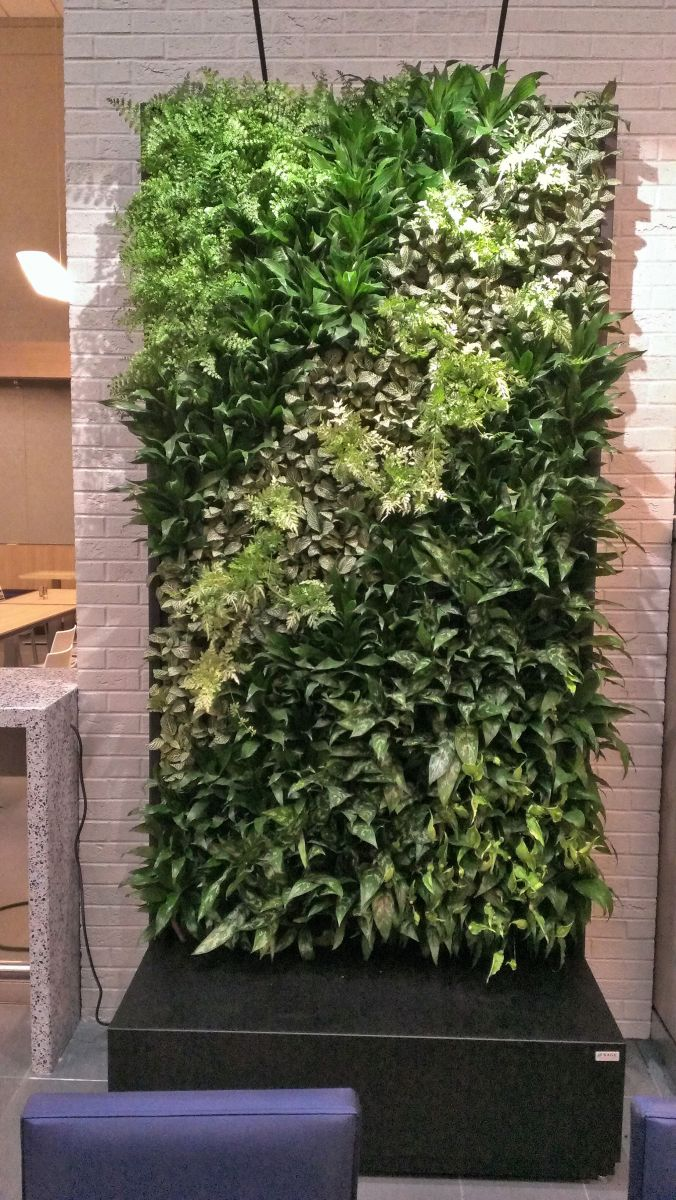 Sage Vertical Gardens Home Design Ideas And Pictures